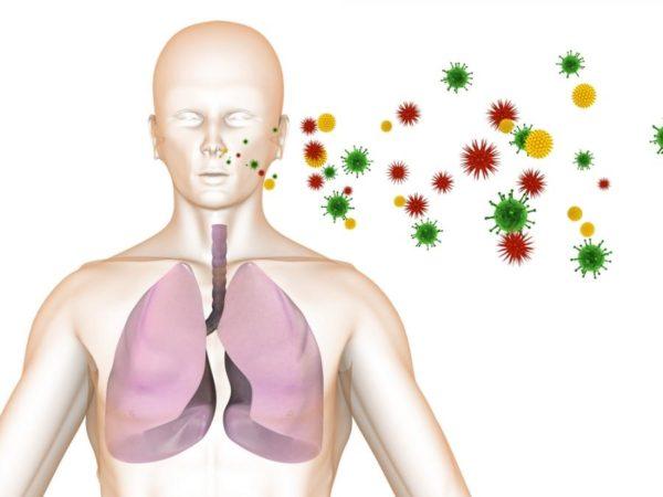Эндогенные инфекции